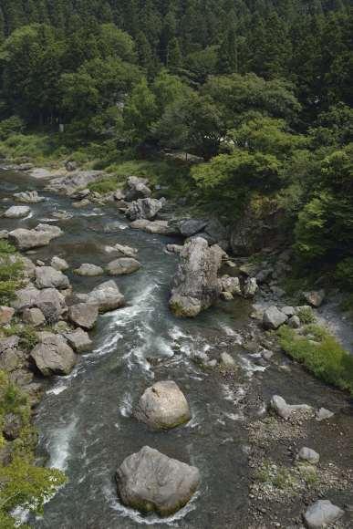 S01_DSC0008多摩川の流れ.JPG