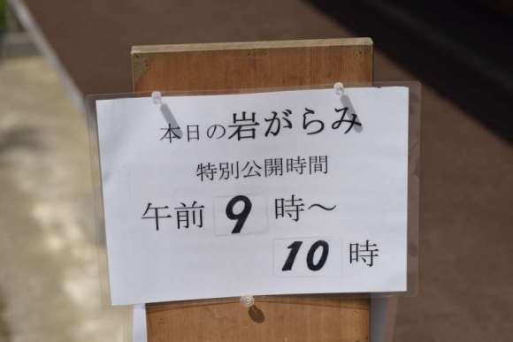 S_04M_07_DSC7546.JPG